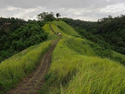 Ubud nature walk
