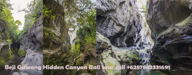 Bali sightseeing tour