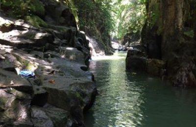 Bali Hidden waterfall Tour